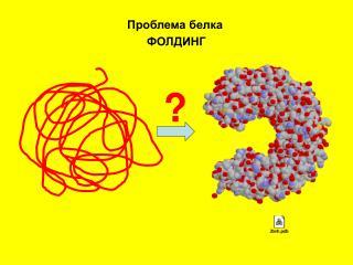 Проблема белка