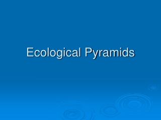 Food Chains  Thermodynamics