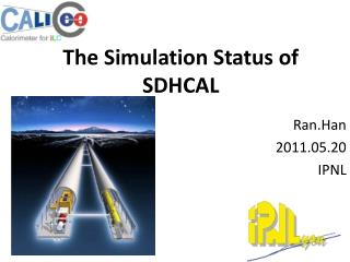 The Simulation Status of SDHCAL