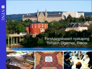Forskningsbasert nyskaping Torbjørn Digernes, Rektor