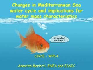 Changes in Mediterranean Sea water cycle and implications for water mass characteristics