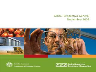 GRDC Perspectiva General Noviembre 2008