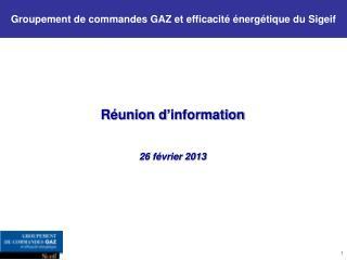 Groupement de commandes GAZ et efficacité énergétique du Sigeif