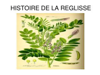 HISTOIRE DE LA REGLISSE