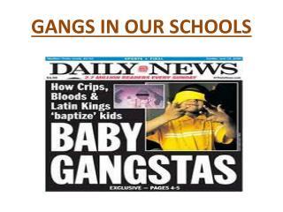 GANGS IN OUR SCHOOLS