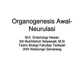 Organogenesis Awal- Neurulasi
