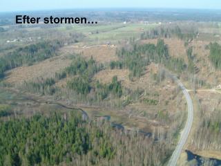 Efter stormen…