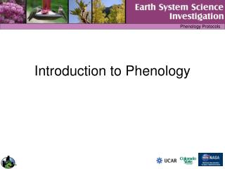 Introduction to Phenology