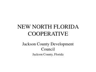 NEW NORTH FLORIDA COOPERATIVE