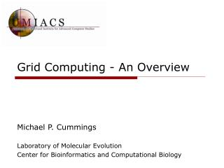 Grid Computing - An Overview