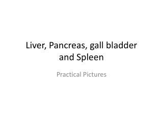 Liver, Pancreas, gall bladder and Spleen