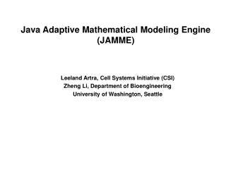 Java Adaptive Mathematical Modeling Engine JAMME