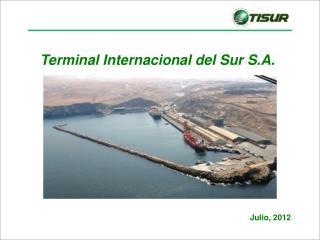 Terminal Internacional del  Sur S.A.