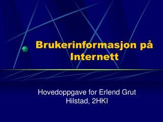 Brukerinformasjon p� Internett