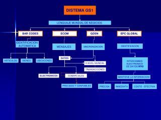 DISTEMA GS1