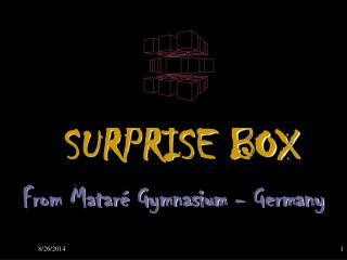 SURPRISE BOX