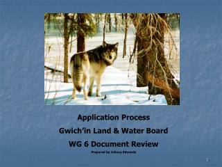 Application Process Gwich'in Land & Water Board WG 6 Document Review Prepared by Johnny Edwards