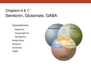 Chapters 6 & 7: Serotonin, Glutamate, GABA