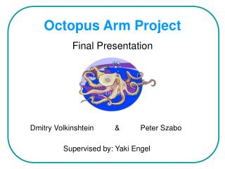 Octopus Arm Project