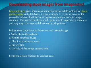Downloading stock images from Imageselect