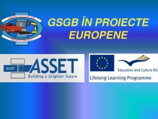 GSGB ÎN PROIECTE EUROPENE