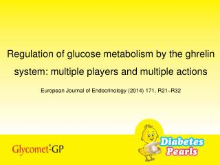 Regulation of glucose metabolism by the ghrelin system: multiple players and multiple actions