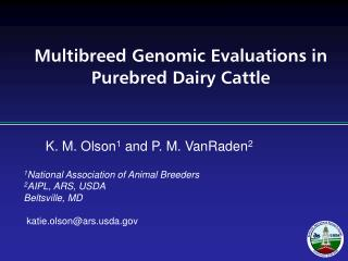 Multibreed Genomic Evaluations in Purebred Dairy Cattle