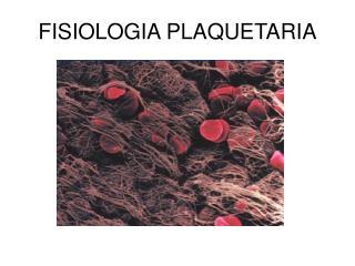 FISIOLOGIA PLAQUETARIA