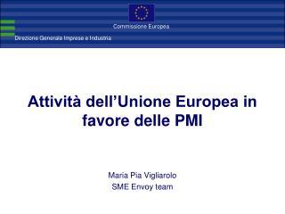 Attività dell'Unione Europea in favore delle PMI