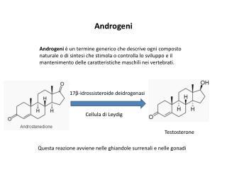 Androgeni
