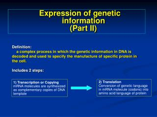 1) Transcription or Copying mRNA molecules are synthesized as complementary copies of DNA template