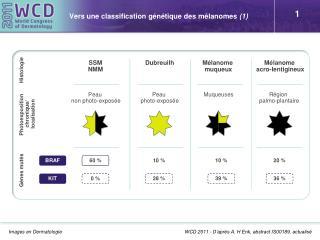 Vers une classification génétique des mélanomes  (1)