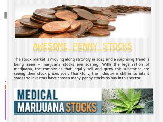 medicalmarijuanastocks.org