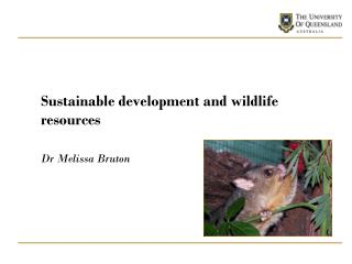 Sustainable development and wildlife resources