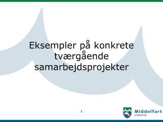 Eksempler på konkrete tværgående samarbejdsprojekter