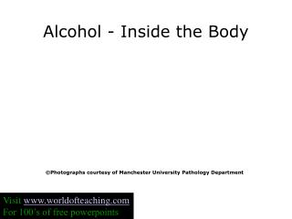 Alcohol - Inside the Body