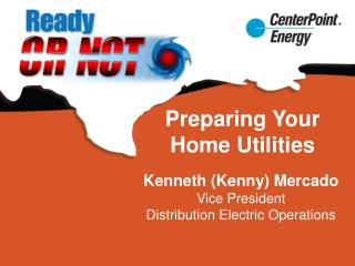 Kenneth Kenny Mercado  Vice President  Distribution Electric Operations