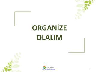 ORGANİZE  OLALIM