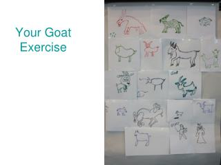 Your Goat Exercise
