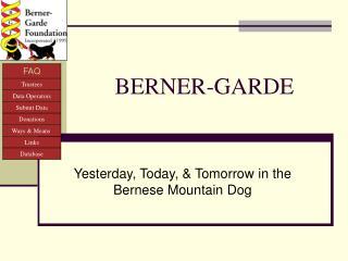 BERNER-GARDE