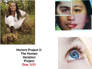 Honors Project 2: The Human Variation Project Due: 3/21