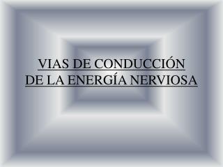 VIAS DE CONDUCCIÓN DE LA ENERGÍA NERVIOSA