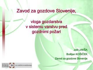 Zavod za gozdove Slovenije, vloga gozdarstva v sistemu varstvu pred gozdnimi požari