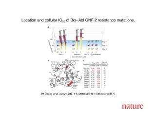 JM Zhang  et al. Nature 000 , 1-6 (2010) doi:10.1038/nature08675