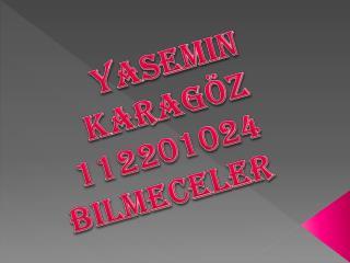 Yasemin karag�z 112201024 bilmeceler