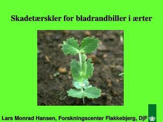 Lars Monrad Hansen, Forskningscenter Flakkebjerg, DjF