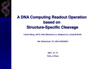 A DNA Computing Readout Operation  based on  Structure-Specific Cleavage