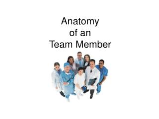 Anatomy of an Team Member