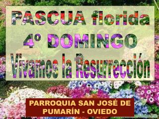 PASCUA florida 4� DOMINGO