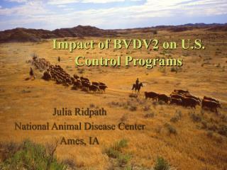Impact of BVDV2 on U.S. Control Programs